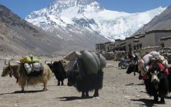 Tibet Overland 12 days